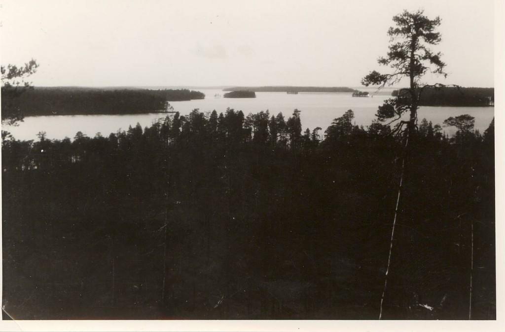 Oheinen kuva on ilmeisesti otettu kv-Arinan tähystystornista  Nuokkijärvelle päin. Taustalla männynkäkkyrän takana siintää  Pismalahden seudut. Pentti Perttulin arkisto.