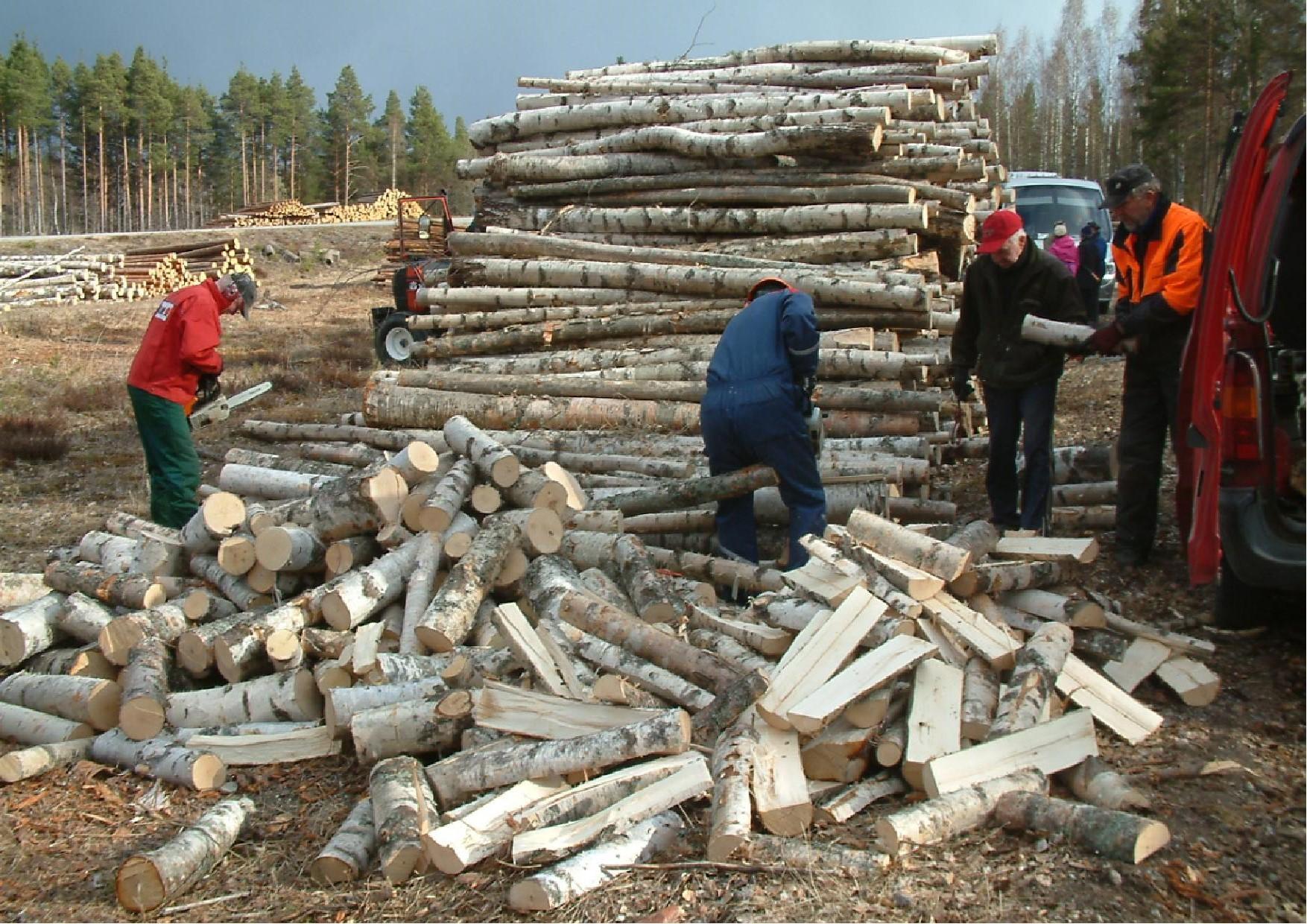 Juuan mottitalkoisiin osallistui pari traktoria ja puut haettiin metsästä saakka.