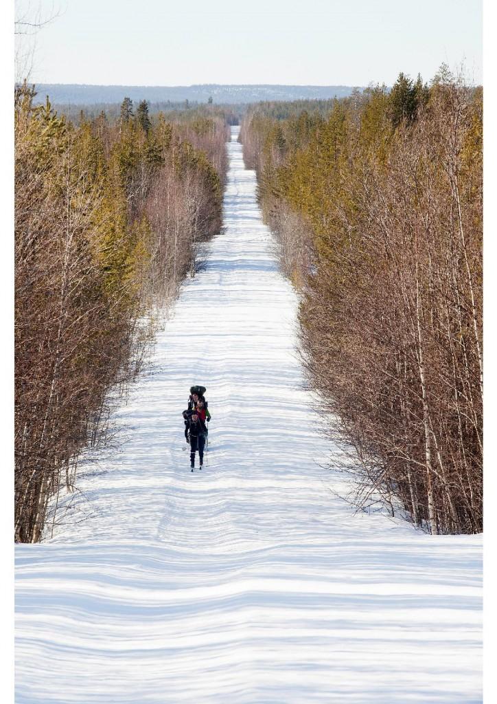 Ryhmä Pieninkä hiihtää vanhaa Pieninkä, Honkaniemi uraa